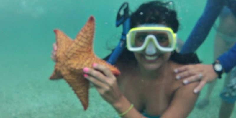 Estrella de Mar Isla Margarita