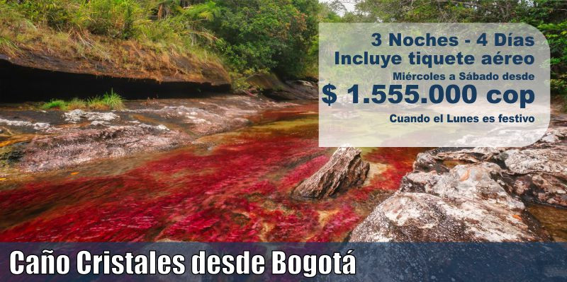 Caño Cristales desde Bogotá